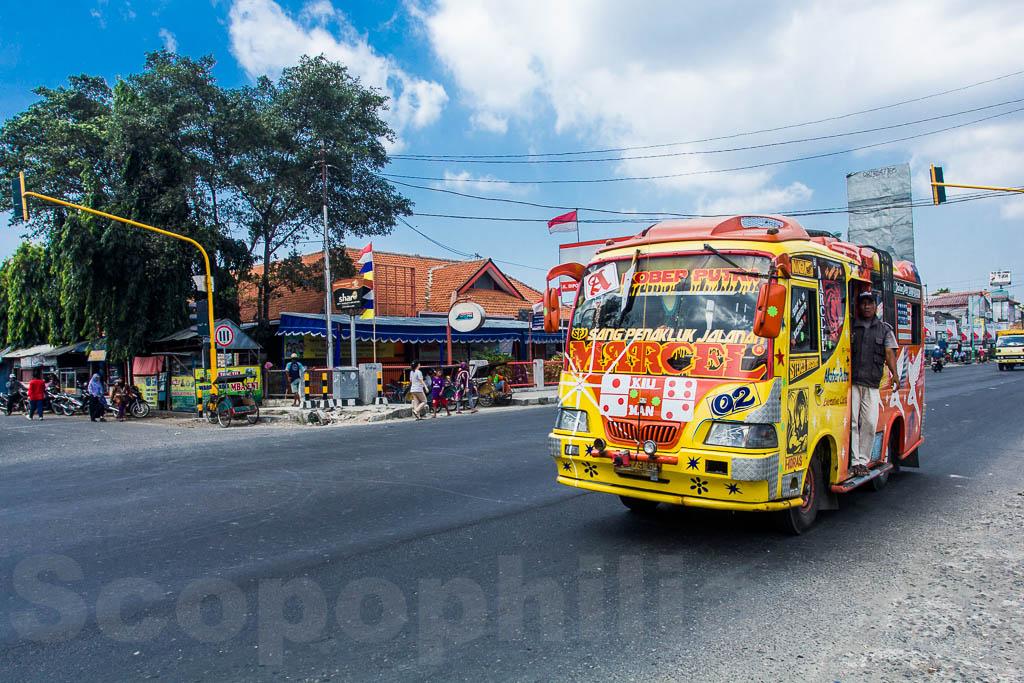 Bis yang penuh warna