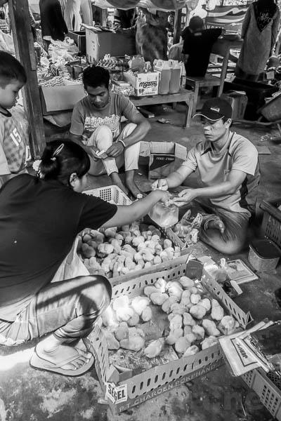 Lubuk Sikaping - Kab. Pasaman -4224-2