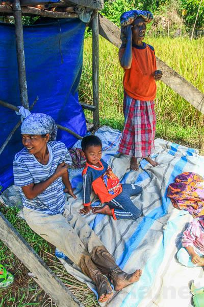 Lubuk Sikaping - Kab. Pasaman -4261