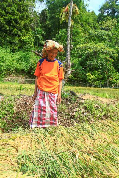 Lubuk Sikaping - Kab. Pasaman -4267